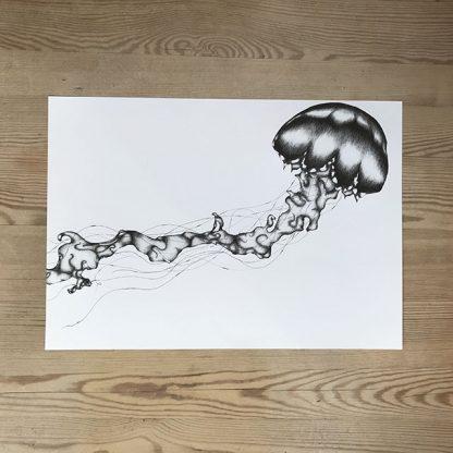 Joss Gustavsson – Jellyfish