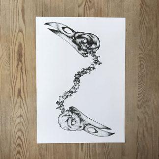 Joss Gustavsson –Raven skulls